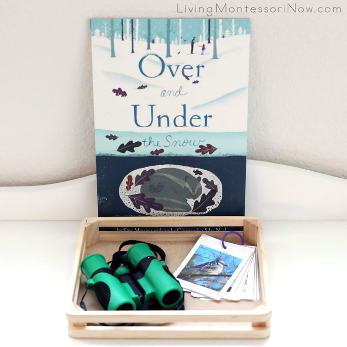 Over and Under the Snow Book with Winter Nature I Spy Booklet and Binoculars