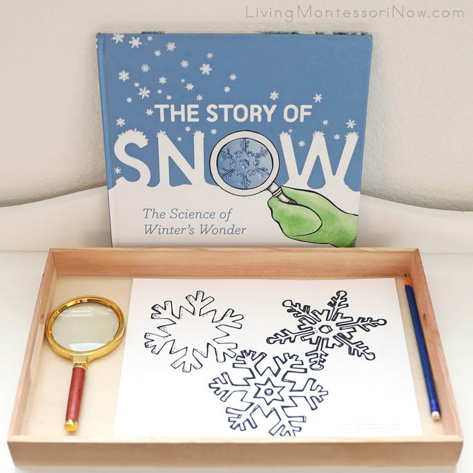 The Story of Snow with Magnify Me Snowflake Sight Word Find