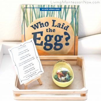 Who Laid the Egg Book with Oviparous Animals Song and Activity Using Mini Oviparous Animal Figures