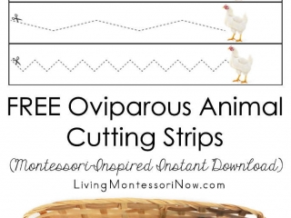 FREE Oviparous Animal Cutting Strips (Montessori-Inspired Instant Download)