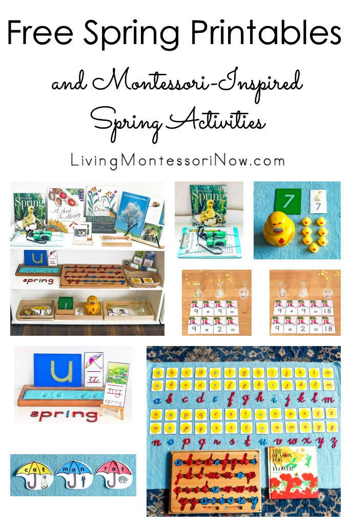 Free Spring Printables and Montessori-Inspired Spring Activities