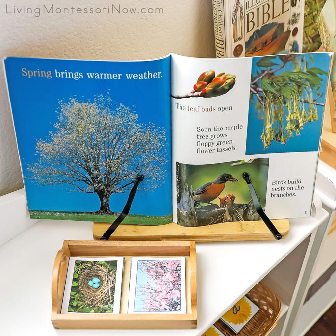 Spring Pages from A Tree for All Seasons with Montessori Spring Matching Cards