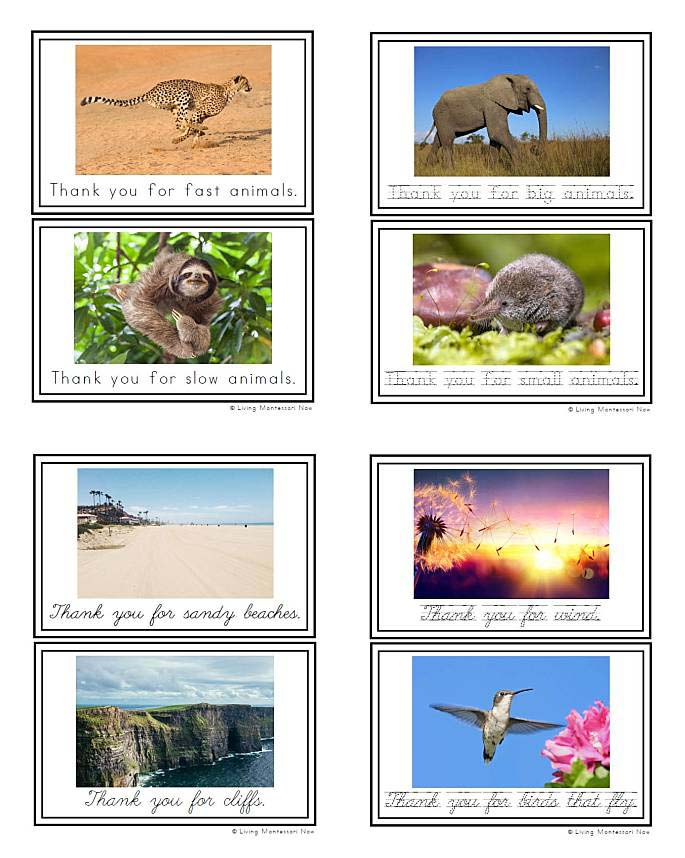 Thank You for Planet Earth (or Thank You, Planet Earth) Mindfulness Cards and Booklet - Manuscript and Cursive Sample Pages