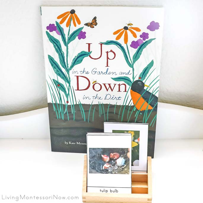 Up in the Garden and Down in the Dirt Book with Spring Flower and Bulb Identification Cards