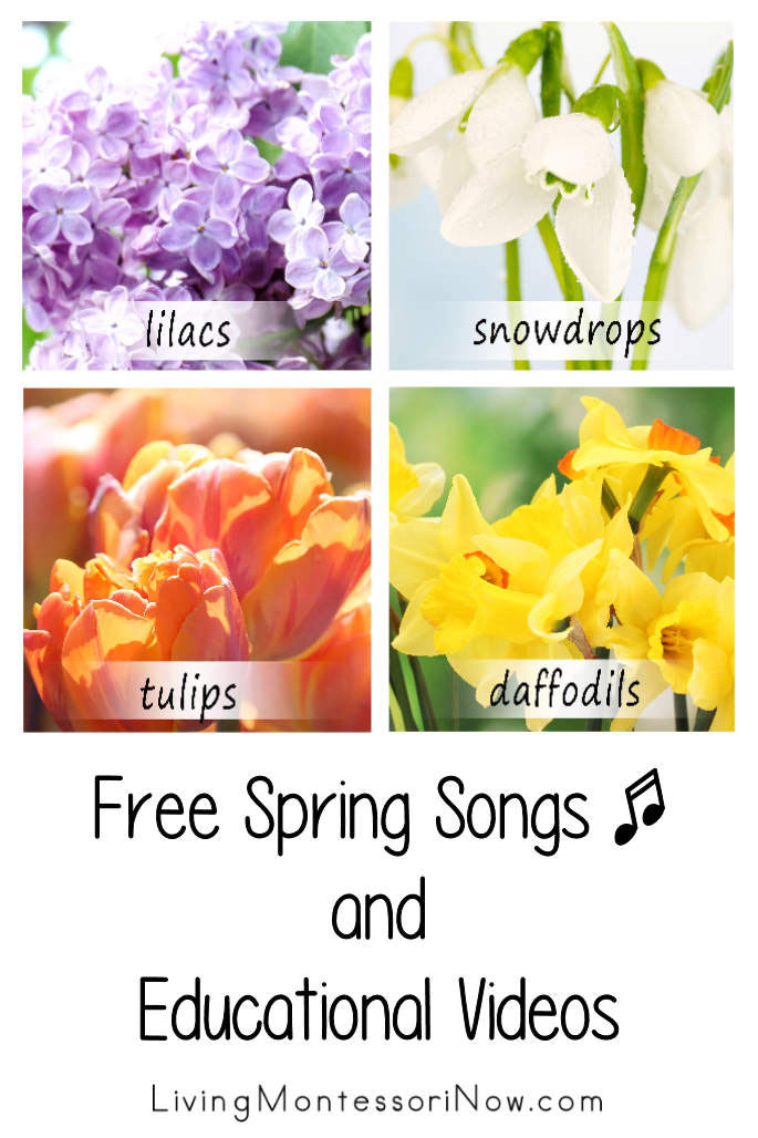 Free Spring Songs and Educational Videos