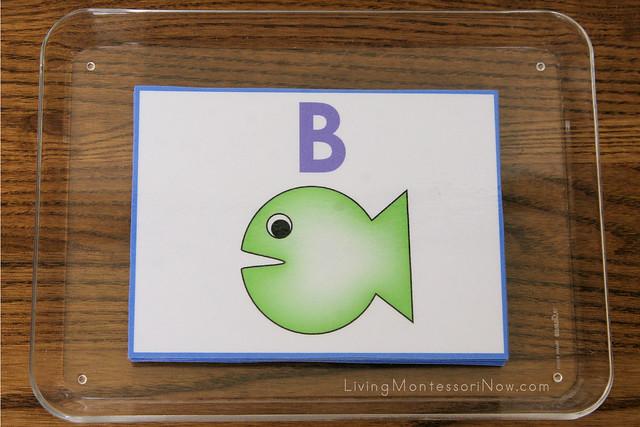Fish Pattern Math Tray