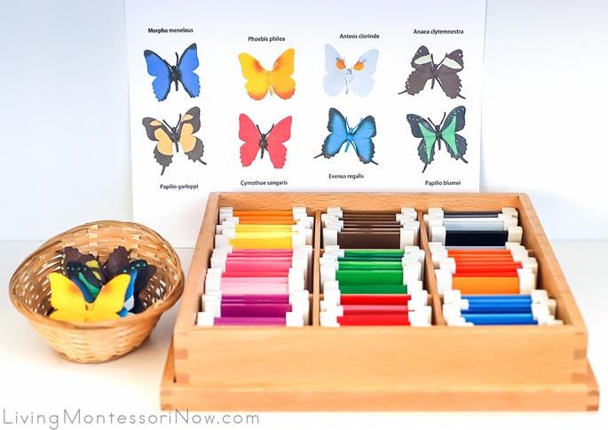 Safari Ltd Butterflies with TOOB Key and Montessori Color Box 3
