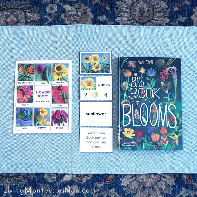 The Big Book of Blooms and Work with Safari Ltd. Flowers TOOB and Free Flower Printables