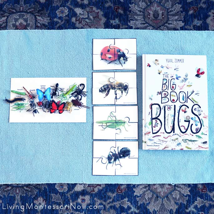 The Big Book of Bugs and Work with Safari Ltd Insects and Arachnids and Free Puzzle Printables