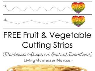 FREE Fruit and Vegetable Cutting Strips (Montessori-Inspired Instant Download)