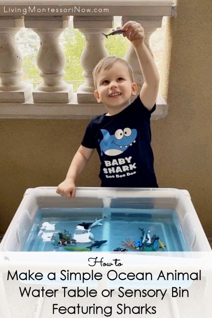 How to Make a Simple Ocean Animal Water Table or Sensory Bin Featuring Sharks