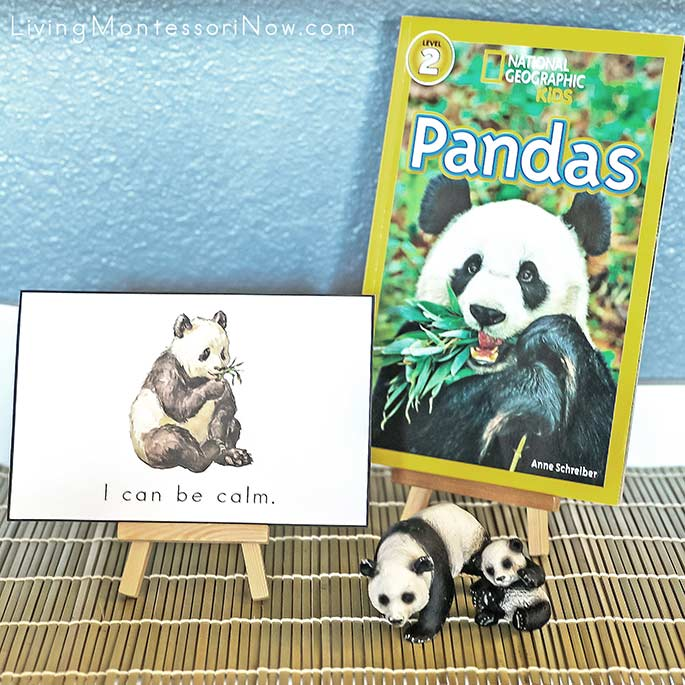 """I Can Be Calm"" Mindfulness Card with Pandas Book and Schleich Pandas"