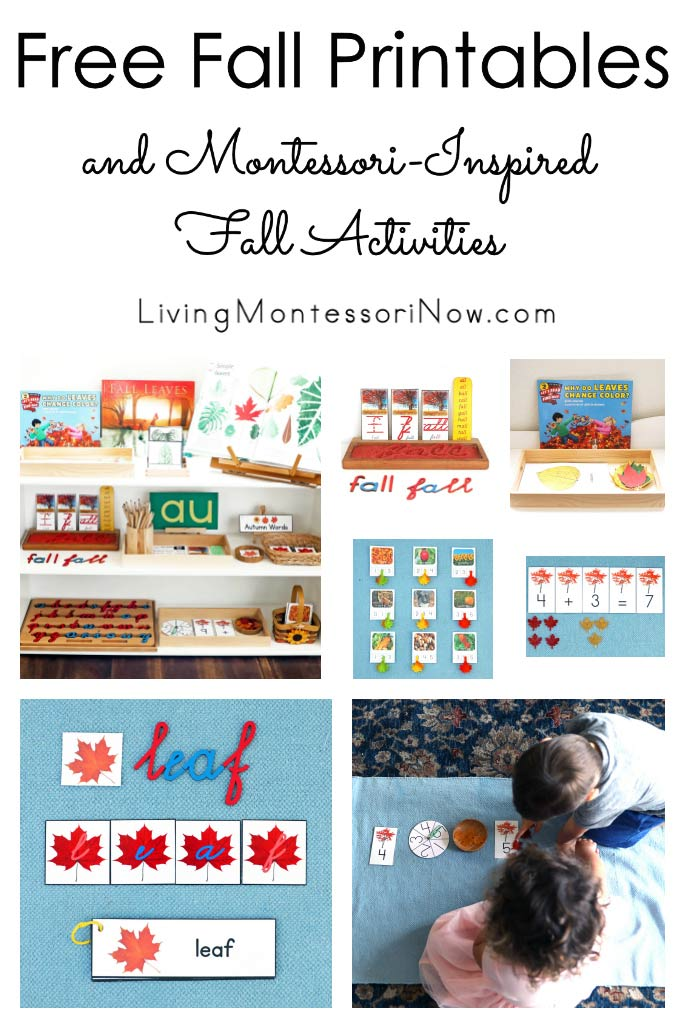 Free Fall Printables and Montessori-Inspired Fall Activities