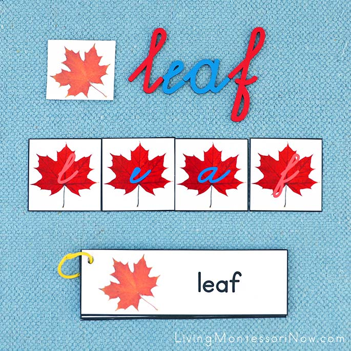 Maple Leaf Word Building Activity