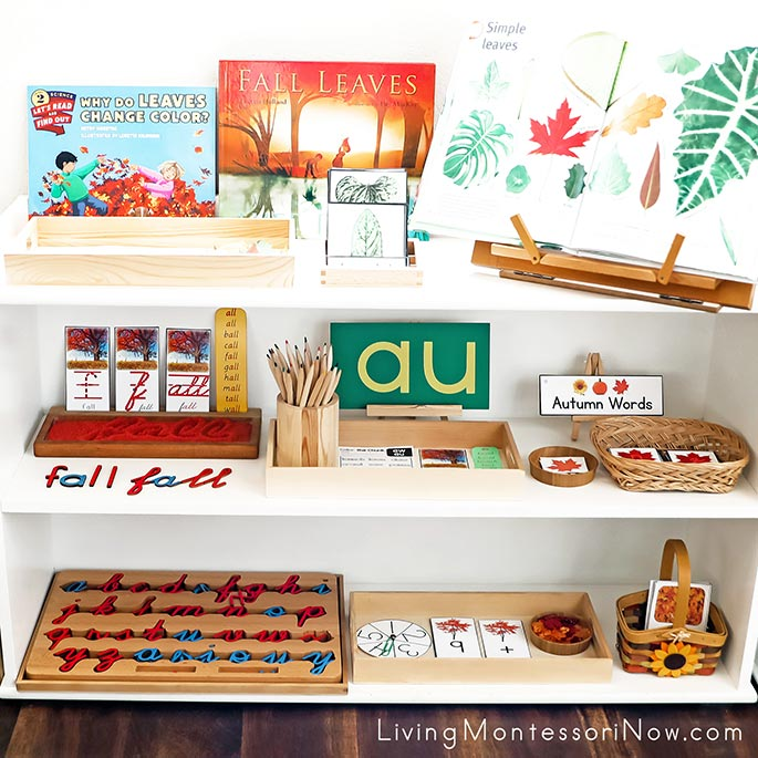 Montessori Shelves with Fall-Themed Activities