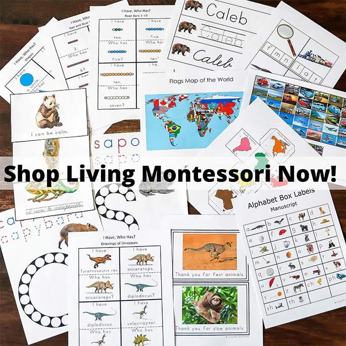 Shop Living Montessori Now