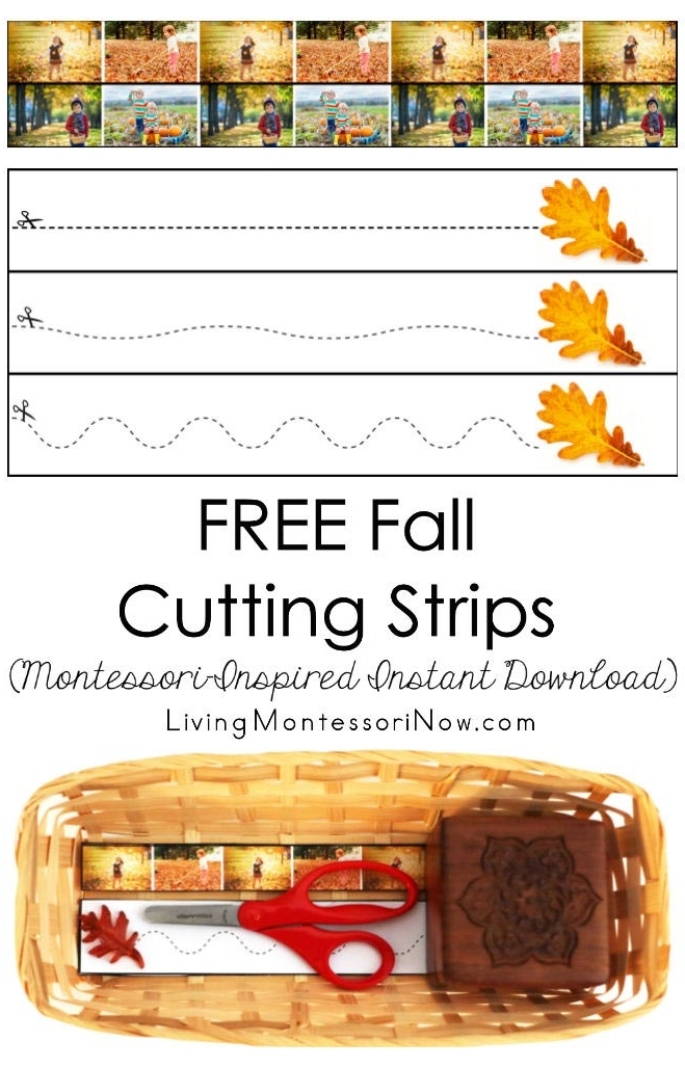 FREE Fall Cutting Strips (Montessori-Inspired Instant Download)