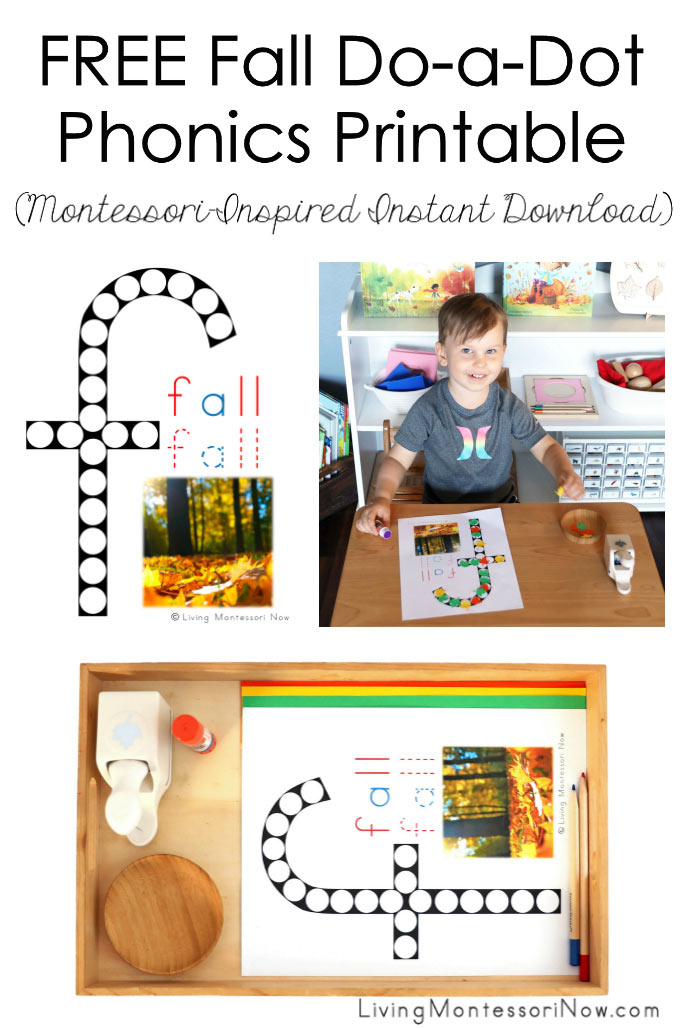 FREE Fall Do-a-Dot Phonics Printable (Montessori-Inspired Instant Download)
