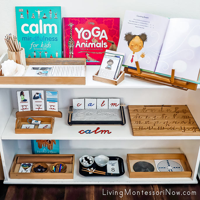 Montessori Shelves with Calm-Themed Activities