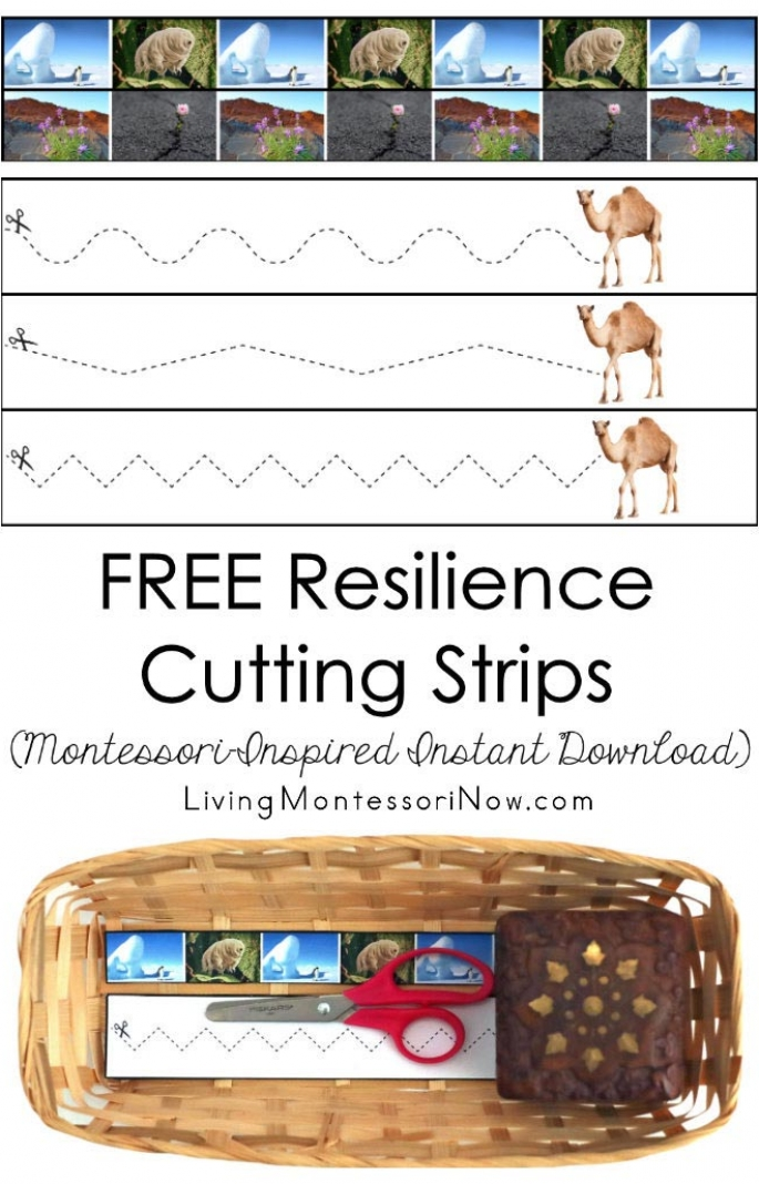 FREE Resilience Cutting Strips (Montessori-Inspired Instant Download)