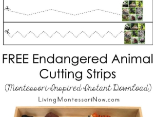 FREE Endangered Animal Cutting Strips (Montessori-Inspired Instant Download)