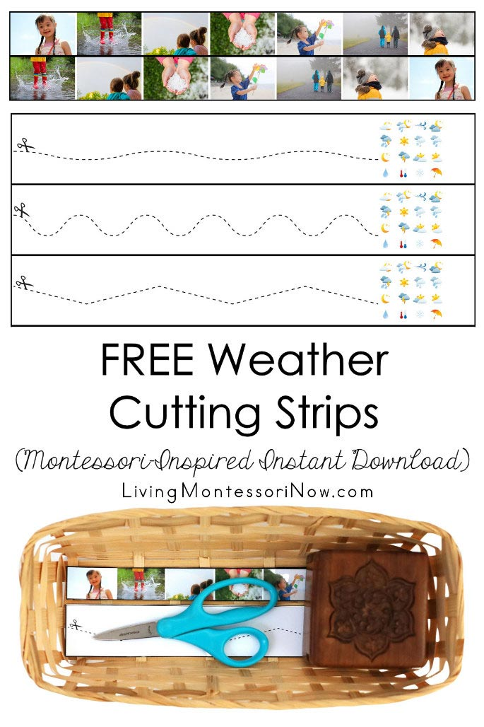 FREE Weather Cutting Strips (Montessori-Inspired Instant Download)
