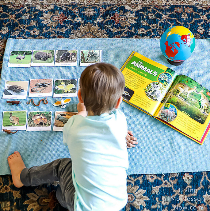 Working with Land Down Under TOOB Figures and Cards with Little Kids First Big Book of the World