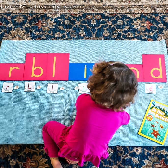 Matching Seashell Letters to Sandpaper Letters