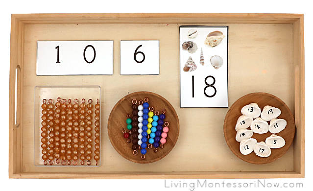 Tray with Free Printable Alternative to Montessori Teen Boards with Bead Bars and Seashell Numbers 11-19