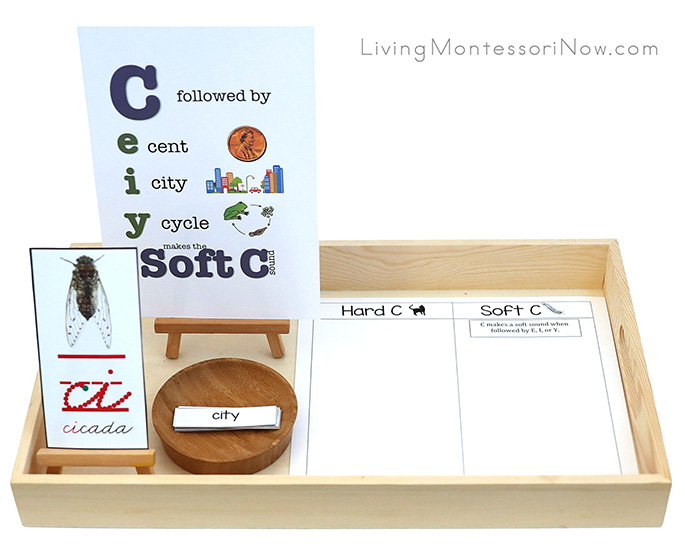 Cicada Card with Soft C (and Hard C) Printables