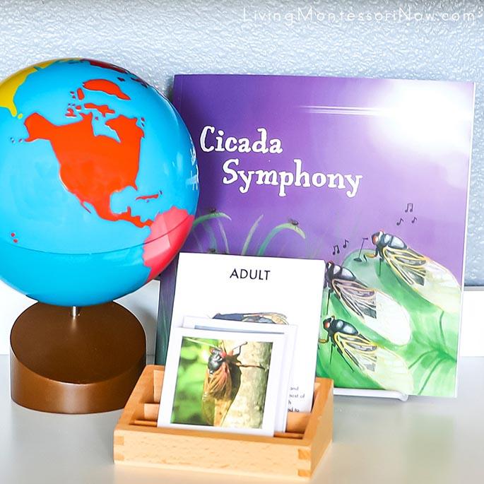 Cicada Symphony with Cicada Life Cycle Cards, Cicadas of the World Cards and Montessori Globe