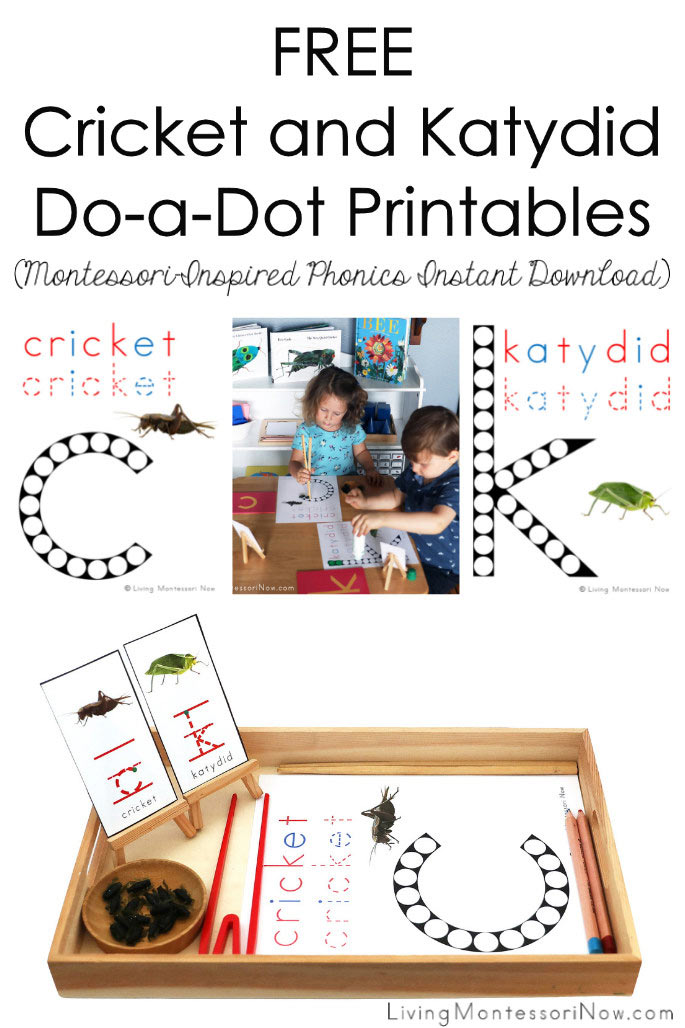FREE Cricket and Katydid Do-a-Dot Printables (Montessori-Inspired Phonics Instant Download)