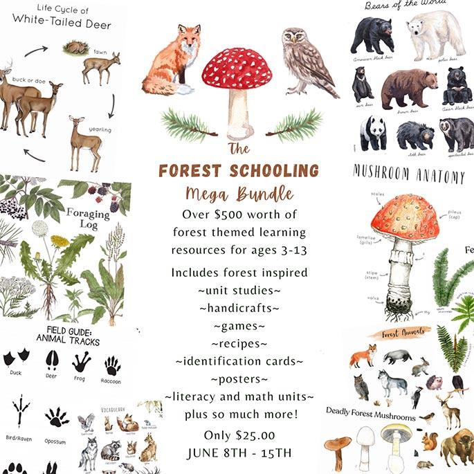 Forest Schooling Mega Bundle only $25 for over $500 Worth of Printables through June 15!