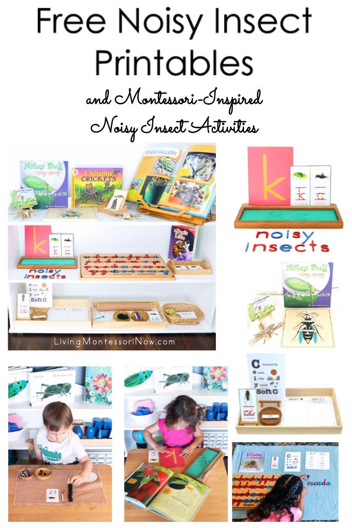 Free Noisy Insect Printables and Montessori-Inspired Noisy Insect Activities