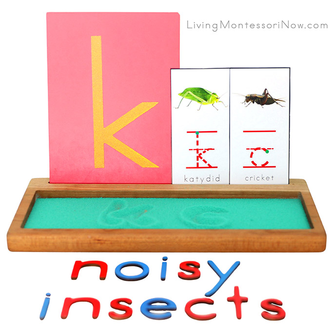 Katydid and Cricket Salt Writing Tray with Noisy Insects Movable Alphabet Spelling