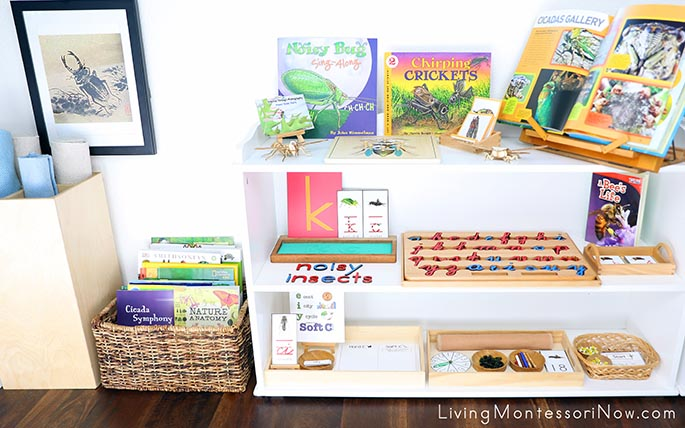 Montessori Book Basket and Shelves with Noisy Insect Themed Activities
