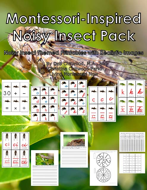 Montessori-Inspired Noisy Insect Pack