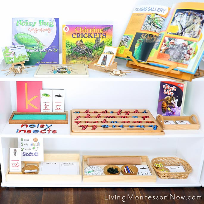 Montessori Shelves with Noisy Insect Themed Activities