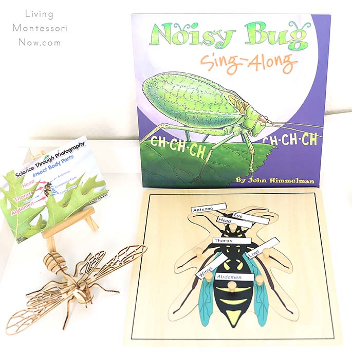 Noisy Bug Sing-Along Book with Insect Body Parts Card, Wooden Honeybee Puzzle, and Wasp Puzzle with Body Part Labels
