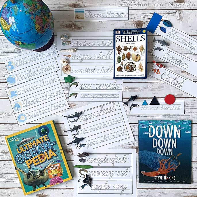 Ocean Books and Some of the Printables from the Ocean-Themed, Editable Name ad Word Tracing Pack in Cursive
