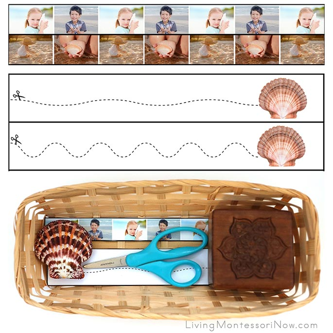Seashell Cutting Strips with Basket and Scallop Shell