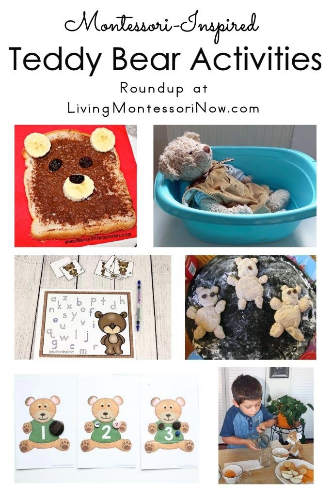 Montessori-Inspired Teddy Bear Activities
