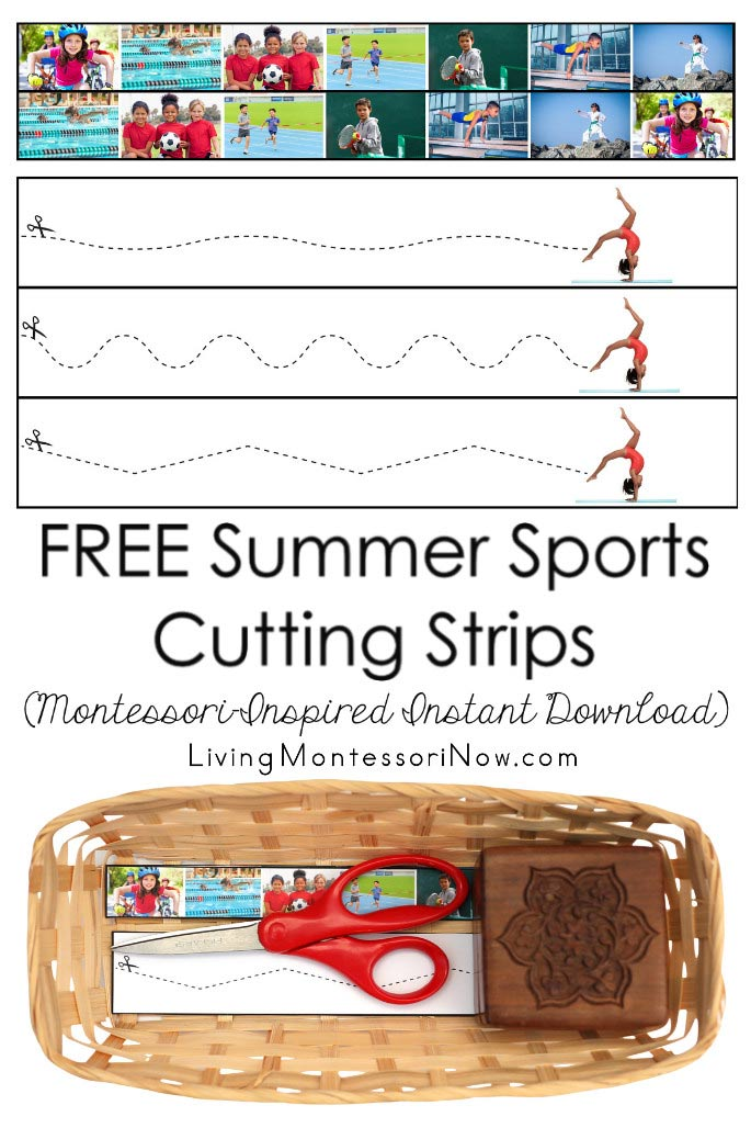 Free Summer Sports Cutting Strips (Montessori-Inspired Instant Download)