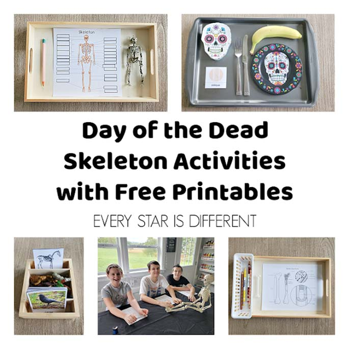 Day of the Dead Skeleton Activities with Free Printable from Every Star Is Different