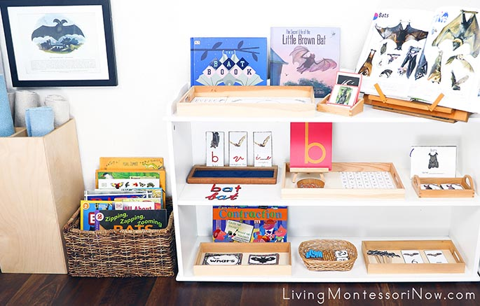 Montessori Book Basket and Shelves with Bat-Themed Activities