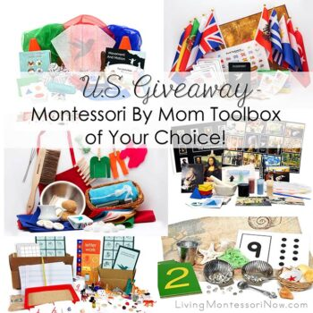 Montessori By Mom Giveaway - Montessori Toolbox of Your Choice