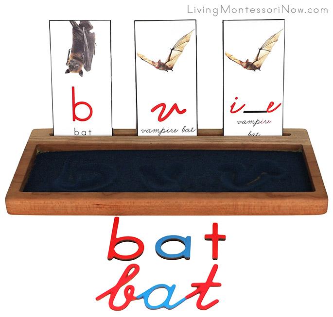 "B for Bat, V for Vampire Bat, and ""i_e"" for Vampire Bat Sand Writing Traywith Movable Alphabet Spelling"