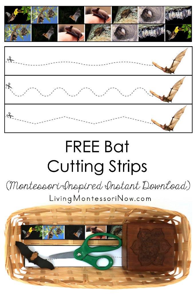 FREE Bat Cutting Strips (Montessori-Inspired Instant Download)